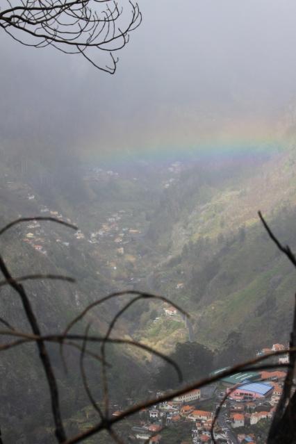Miradourolta alas laaksoon. Mustat oksat kuvassa ovat vuoden 2010 lajojen metsäpalojen jäljiltä.