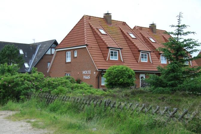 Paikallinen talo. Kaikkien talojen tmpärillä on jonkinmoinen tuulensuojaistutus tai maavalli.
