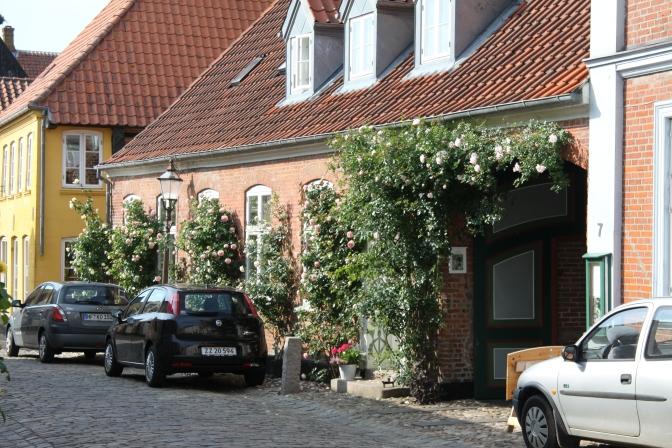 Ruusuköynnöksiä ja vanhoja taloja