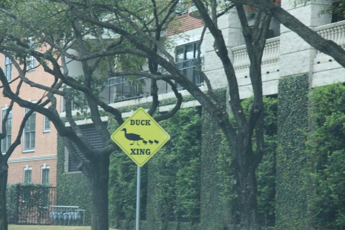 Ei Houston ole pelkästään kovien arvojen kaupunki :)