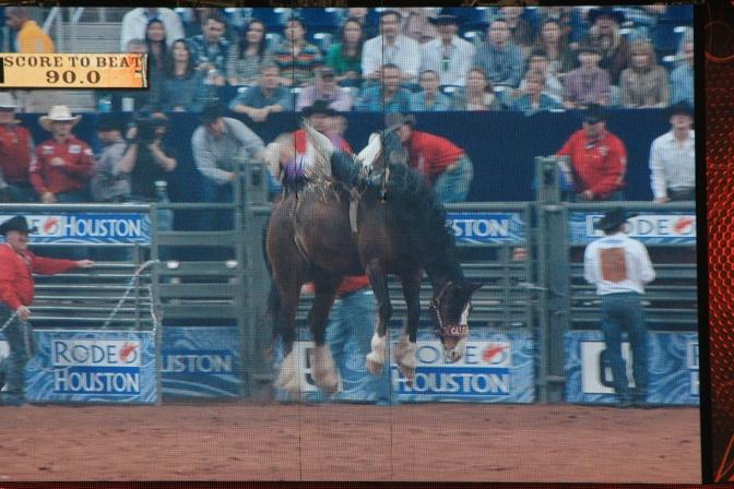 Kuva otettu areenan näyttöruudusta. Noi vaaleammat osiot ovat cowboyn jalat