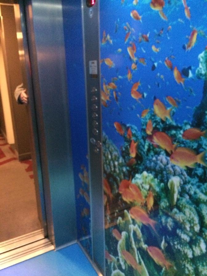 Penta -hotellin hissi oli hieno. Merellisen teeman kruunasi validen ääntely hissimusiikkina.