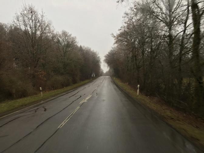 Tien varren puiden latvat olivat jäässä. Tie oli kuitenkin sula.