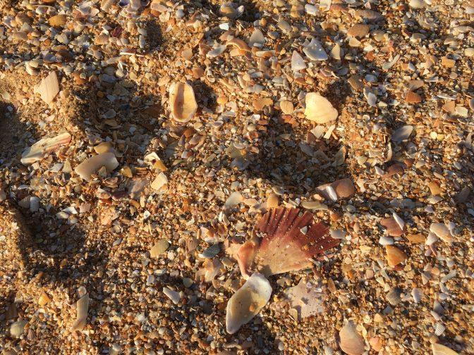 Hiekkarannan hiekkaa...
